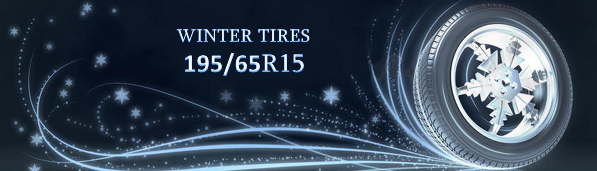 Winter Tires 195/65R15